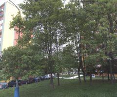 Do 26.6.2018 Aukce / prodej bytu 2+1. Tato nemovitost leží v okrese Teplice. Vyvolávací nebo kupní cena 300 000 Kč.