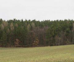 02.08.2018  Dražba / prodej pozemku. Tato nemovitost leží v okrese Rakovník. Vyvolávací nebo kupní cena 172.000 Kč