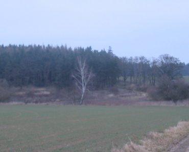 12.12.2018 Dražba pozemku. Tato nemovitost leží v okrese Písek. Vyvolávací cena 60.000 Kč, (ID: 387548)