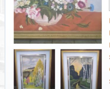 Do 4.2.2019 Aukce souboru movitých věcí - obrazy. Vyvolávací cena 1.485 Kč.