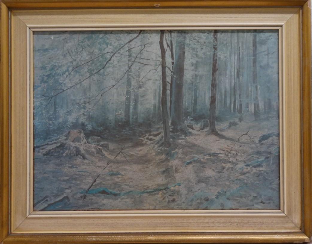 Do 16.2.2020 Aukce (Obraz reprodukce: LES). Vyvolávací cena 52 Kč, ➡️ ID678677
