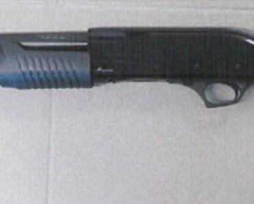 Do 14.7.2021 Výběrové řízení na prodej zbraně (Brokovnice). Min. kupní cena 4.000 Kč, ➡️ ID808470