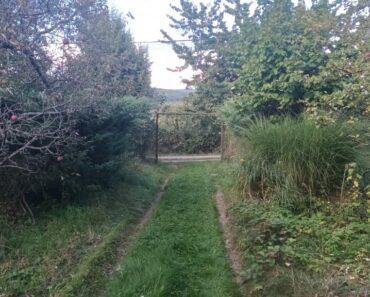 19.10.2021 Dražba nemovitosti (Zahrada se dvěma chatkami). Vyvolávací cena 1.500.000 Kč, ➡️ ID830022